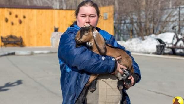 Любвеобильный козлик Чоки пополнил барнаульский зоопарк