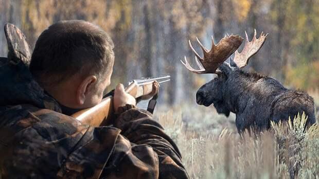 Охотник из Вологодской области принял знакомого за лося и застрелил его