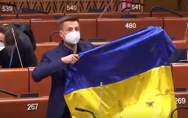 В Совете Европы принесли России извинения за провокацию украинского депутата
