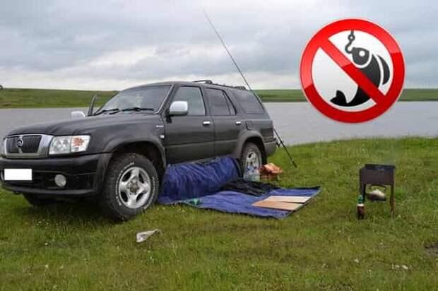 Как можно хитро обжаловать штраф за машину у реки: что нужно указать в протоколе