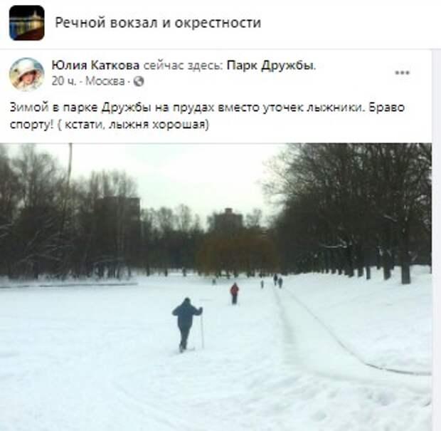 Фото дня: лыжники заменили уточек в парке Дружбы