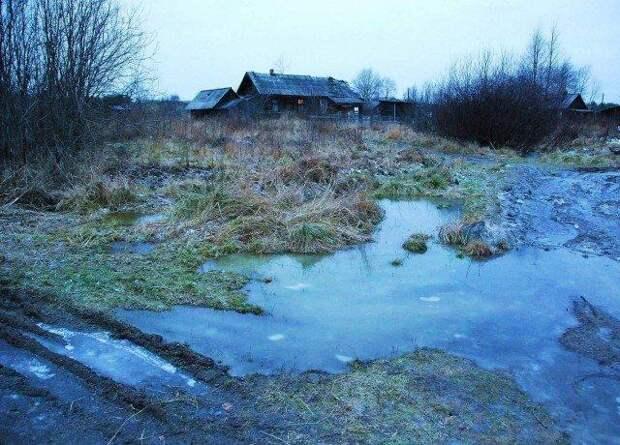 Морозное утро в деревне