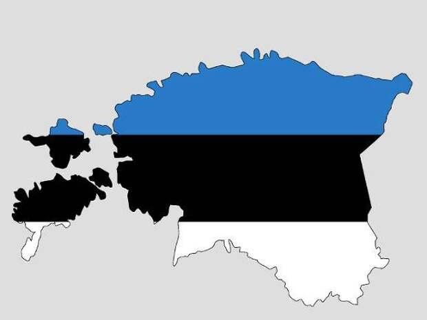 В Эстонию прибыли советские штурмовики для учений по «сдерживанию России»
