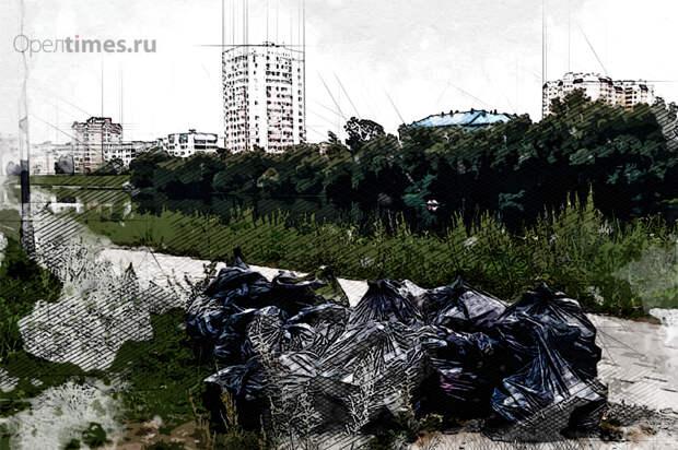 Ищем 300 «спартанцев»: почему «Чистая прогулка» вызвала в Орле большие сомнения