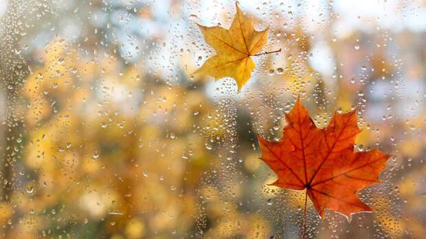 Облачная погода с температурой до +12°C ожидается в Москве 15 сентября