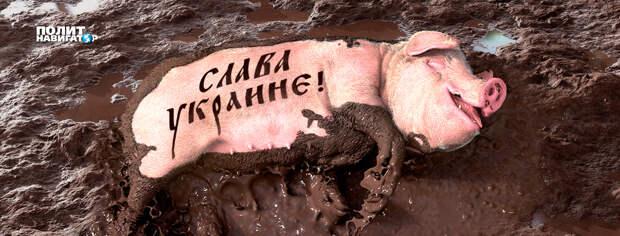 Джангиров объяснил, почему украинский национальный миф трещит по швам