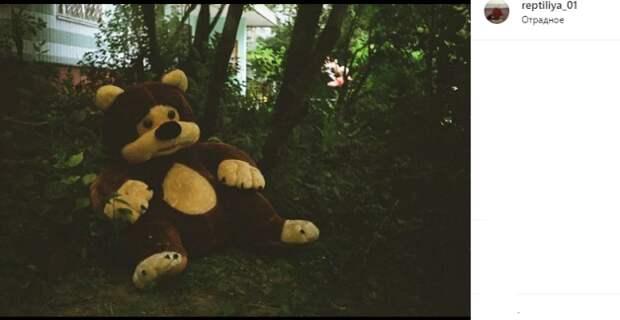 Фото дня: в Отрадном огромного плюшевого медведя выбросили на улицу