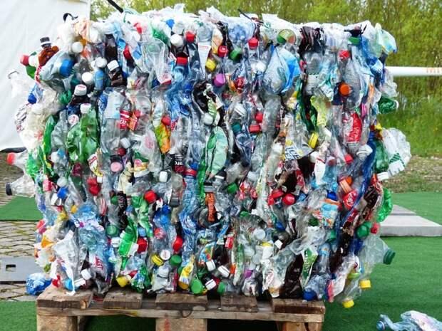 Разделяй и не плати: штрафовать за выброс не расфасованных по сортам отходов планируют в России