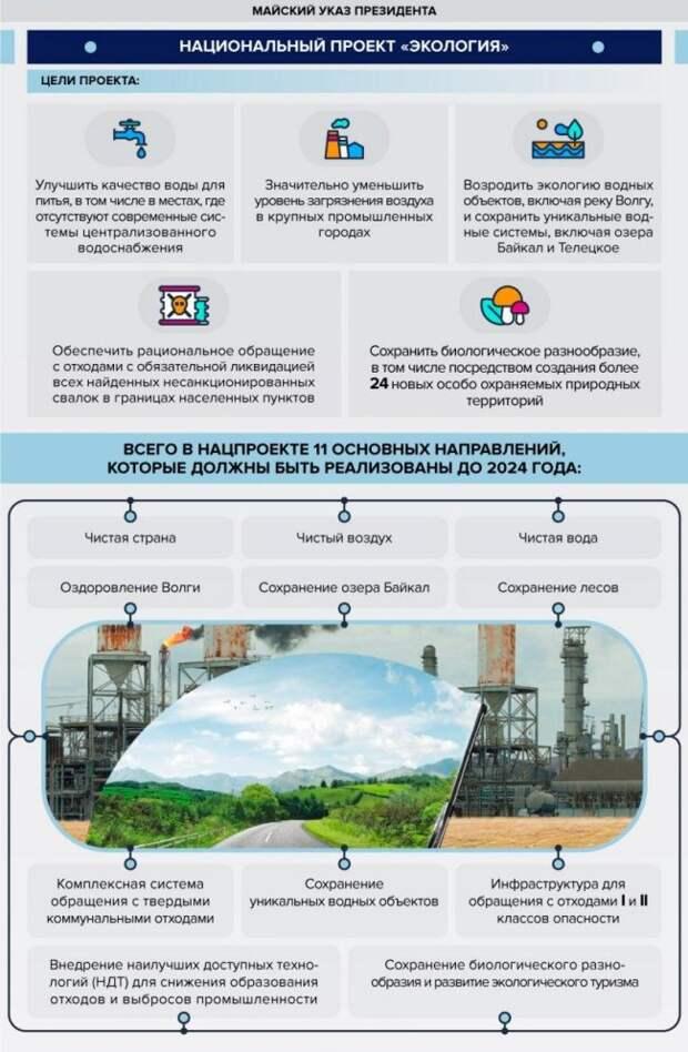 Сбор раздельного мусора и утилизация упаковок производителями: новые экологические инициативы россия, владимир путин, экология