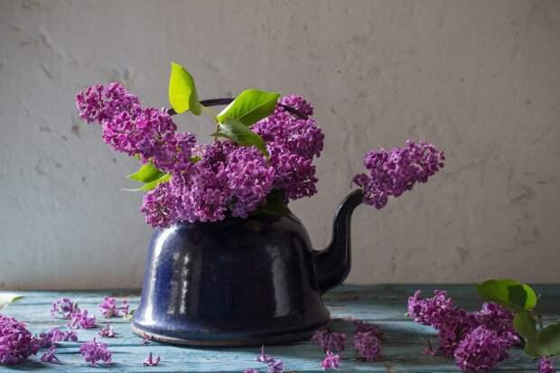 как приготовить сироп в домашних условиях
