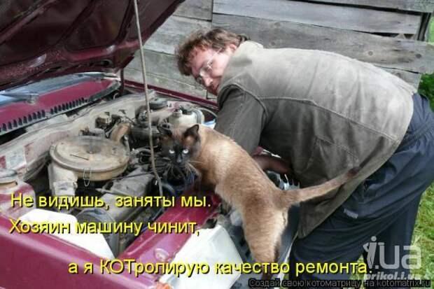 http://i1.i.ua/prikol/pic/1/9/638091_638459.jpg