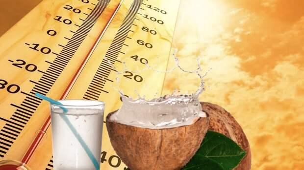 Чем питаться летом: продукты, которые помогут победить жару