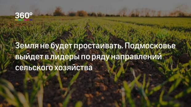 Земля не будет простаивать. Подмосковье выйдет в лидеры по ряду направлений сельского хозяйства