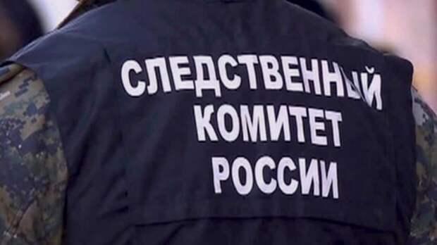 В СК РФ рассказали о расследовании гибели уральской блогерши