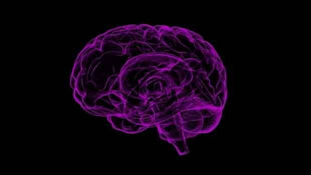 Психолог из Канады выяснил, когда у человека появляются первые воспоминания