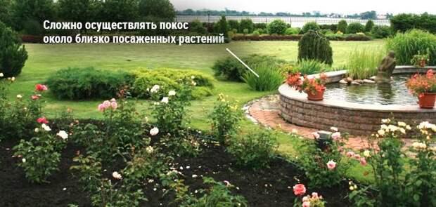 оформление цветочной клумбы и газона