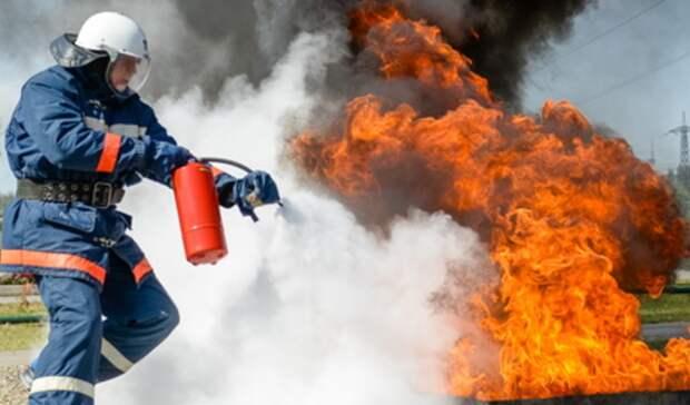 Пожары из-за тополиного пуха полыхают вВерхней Салде