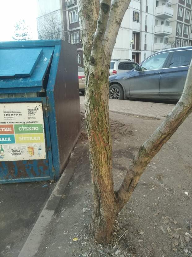 Кучу мусора возле контейнерной площадки в Тенистом проезде убрали