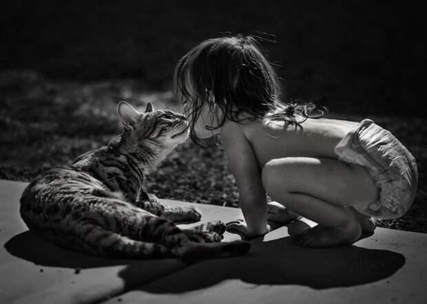 Дети и кошки