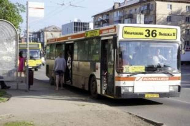 К новому учебному году в Перми увеличилось количество автобусов