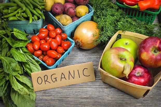 Органические продукты: польза или дань моде
