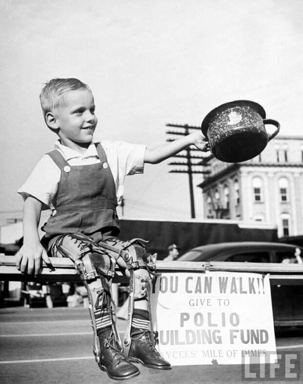 Дэвид Хэнсли, маленький ребенок, искалеченный полиомиелитом с обеими ногами в скобках, собирает средства в государственном агентстве по сбору средств для новой больницы для полиомиелита. High Point, NC 1948.  история, люди, фото