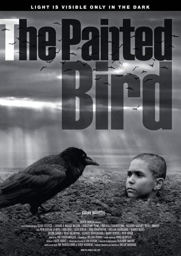 """Черно-белый мир и """"Раскрашенная птица"""""""
