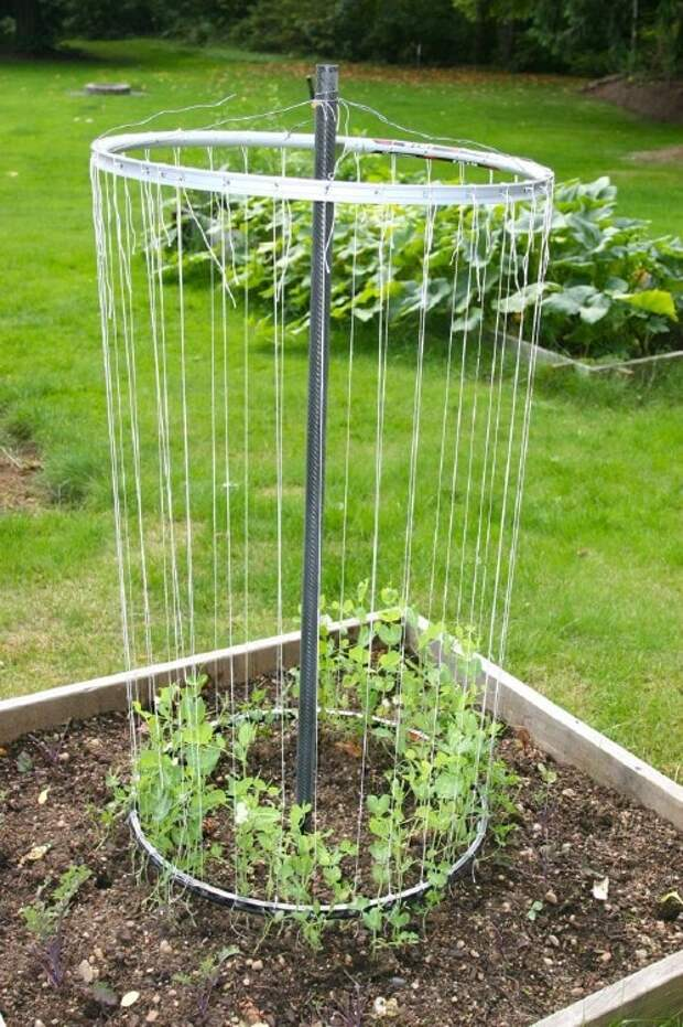Полезные советы и рекомендации для садоводов. Главное простые и доступны по цене