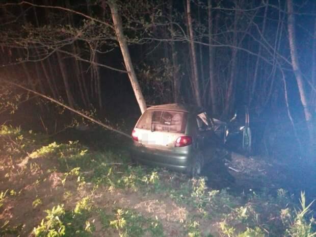 При столкновении иномарки с деревом в Тверской области погибла женщина