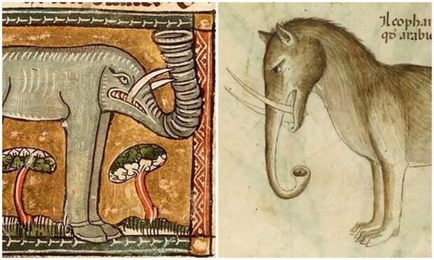 Чудище носатое: как в Средневековье рисовали слонов