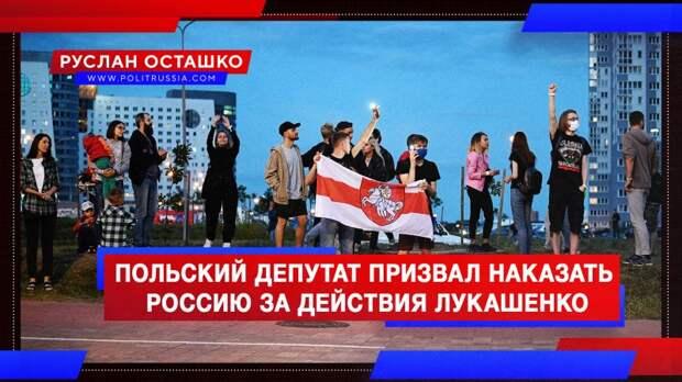 Цирк приехал: польский депутат призвал наказать Россию за действия Лукашенко