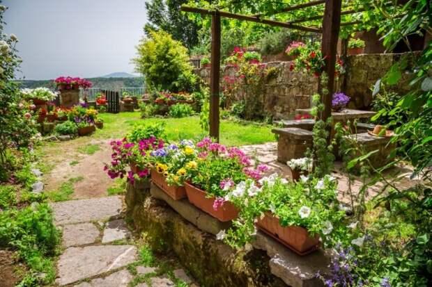 Яркий сад в средиземноморском стиле
