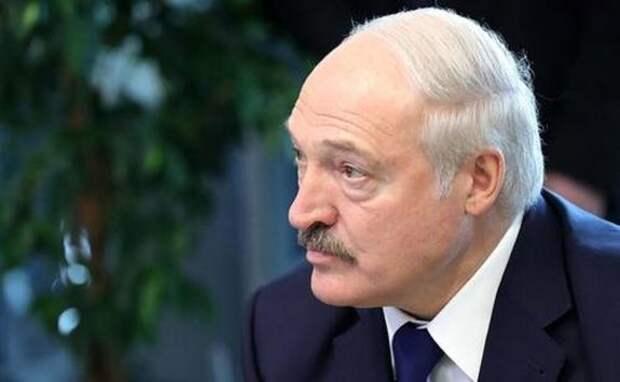 Лукашенко предложил тем, кто найдет его «дворец», тут же в нем поселиться