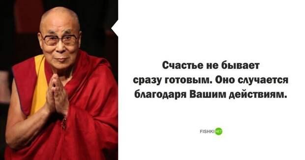 Далай-лама высказывания, звезды, знаменитости, известные люди, интересно, мудрость, подборка, цитаты