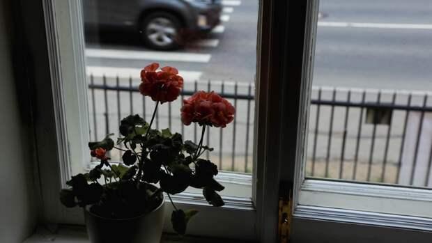 Пожилая жительница Твери выпала из окна квартиры на четвертом этаже