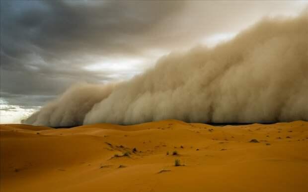 Стена из песка воздухе: как рождается хабуб