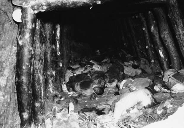 k25 0101 46 впечатляющих снимков Корейской войны