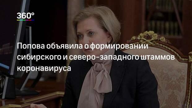 Попова объявила о формировании сибирского и северо-западного штаммов коронавируса