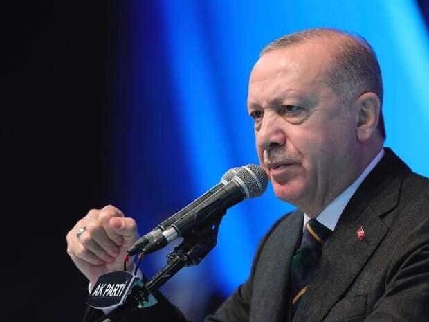 Эксперт прокомментировал проклятия Эрдогана в адрес Австрии