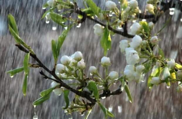Синоптики прогнозируют изменения в погоду